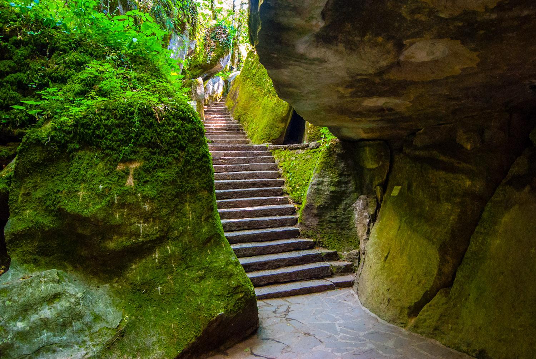 Trekking al Santuario della Verna nel Parco Nazionale delle Foreste  Casentinesi | 5 Novembre 2017